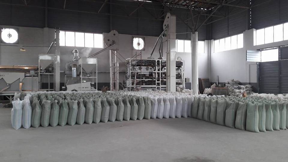Mung Bean Processing Plant