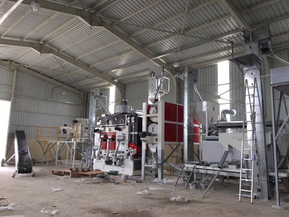 5 H/S Pulses Processing Plant