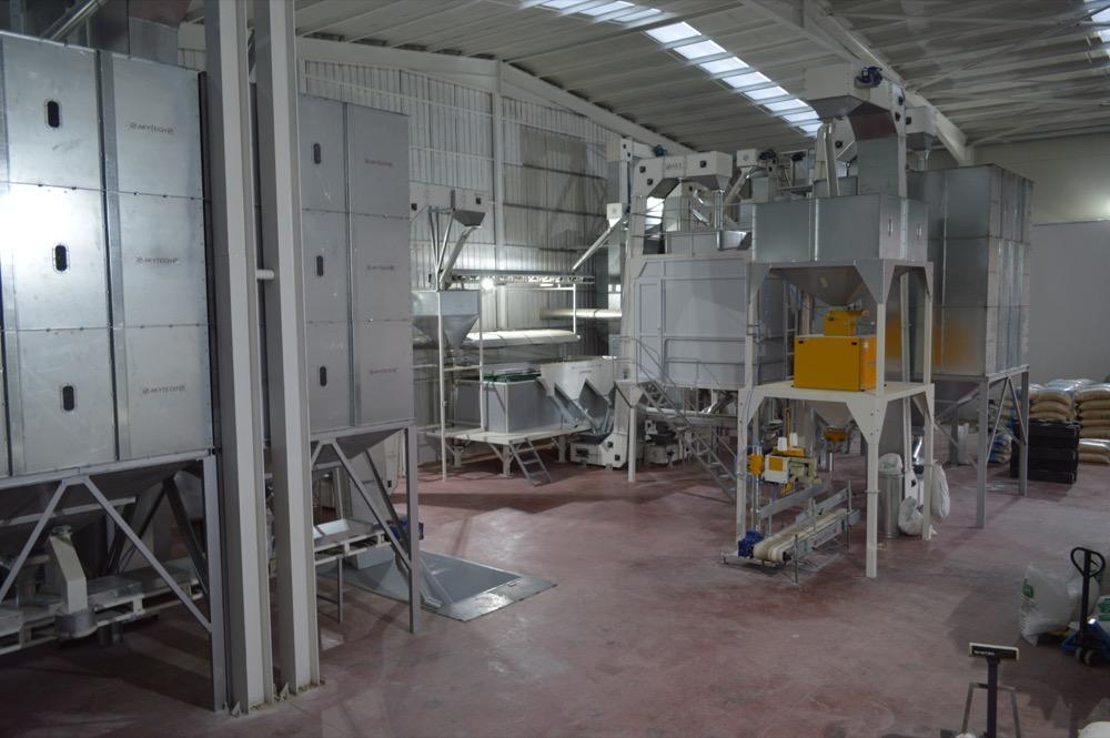 Pumpkin Seeds Cleaning & Screening Plant