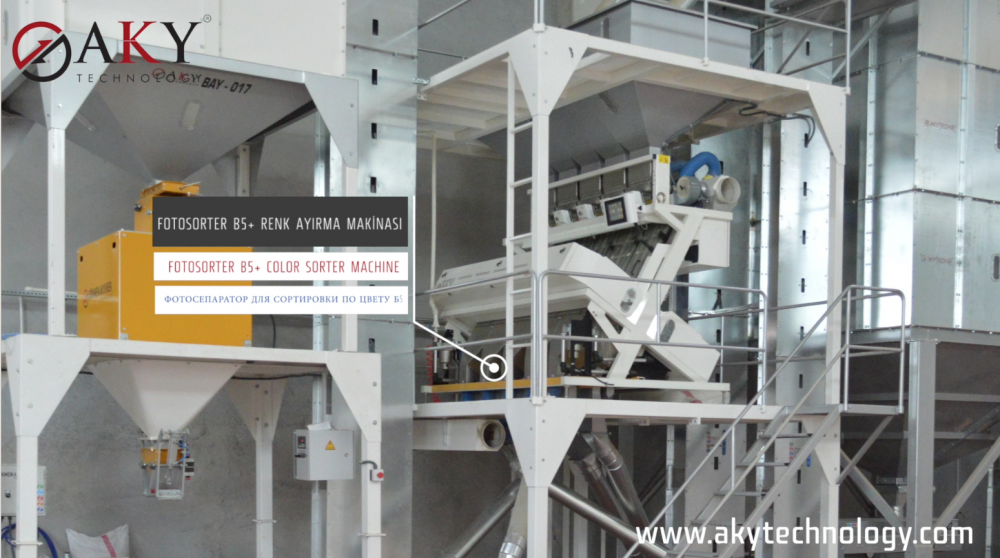 5 T/S Seeds Processing Plant