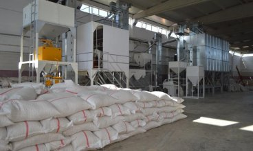 5 H/S Sunflower Seeds Cleaning Plant